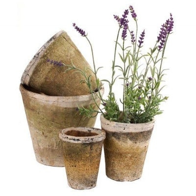 Antiqued Whitestone Rose Pot